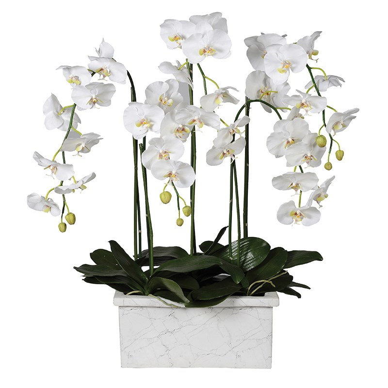 Artificial White Orchid In A Planter