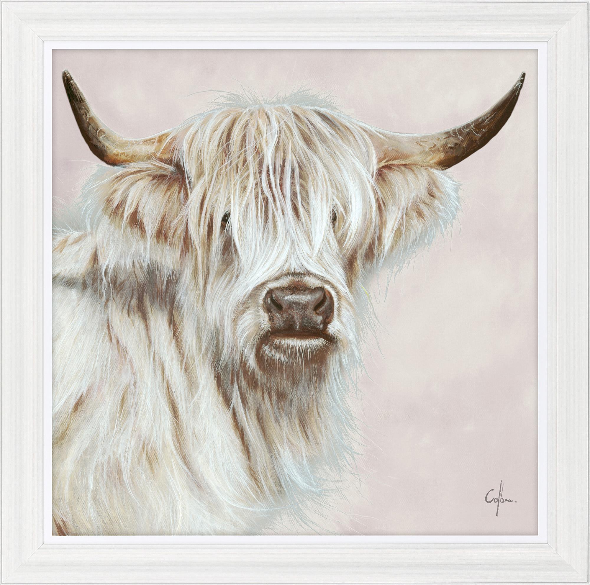 Beryl The Blonde Highland Cow